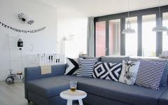 salon séjour appartement jeune couple design scandinave