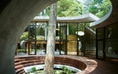arbre vivant intégré maison futuriste