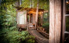 rustique aventure cabane des les bois
