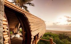 cabane en bois arbres exotique sur la plage