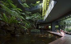 patio cour intérieure jardin piscine luxe