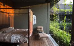 ouverture exotique chambre maison verte