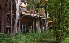 appartement écologique immeuble