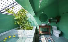 design verdoyant salle de bain exotique