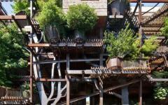 bâtiment écologique en bois