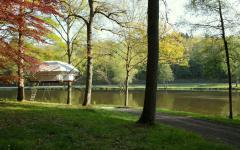 projet original cabane suspendue dans les arbres