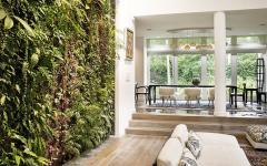 mur vert original de la maison de charme