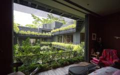 vue verte sur patio piscine cour intérieure maison originale