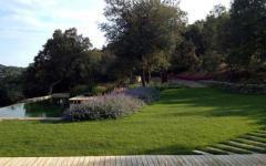 Espace outdoor design verdoyant