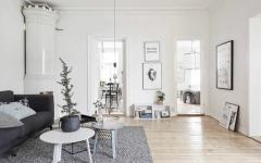 séjour appartement design scandinave