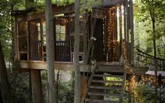 cabane vue d'extérieur dans les arbres