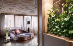 intérieur design luxueux mur végétal