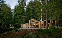 villa rustique en bois dans le bois