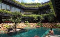piscine naturelle avec verdure maison d'archi
