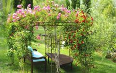 espaces outdoor villa de luxe ibiza
