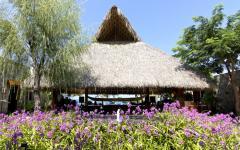 inspiration exotique maison de famille mexique