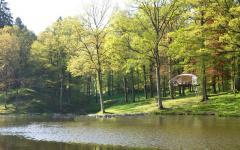 vacances originale près lac