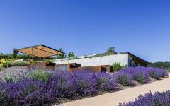 maison de campagne moderne au cœur des terres champ de lavandes