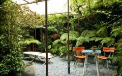 petit jardin maison au coeur de Paris