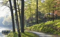cadre splendide cabane écologique dans les bois