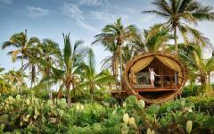 vacances exotiques maison en bois retraite