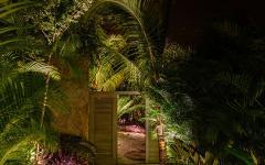 jardin palmier résidence côtière Mexique luxe