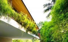 verdure maison sympa exotique