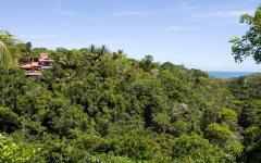 location de vacances mer forêt tropicale